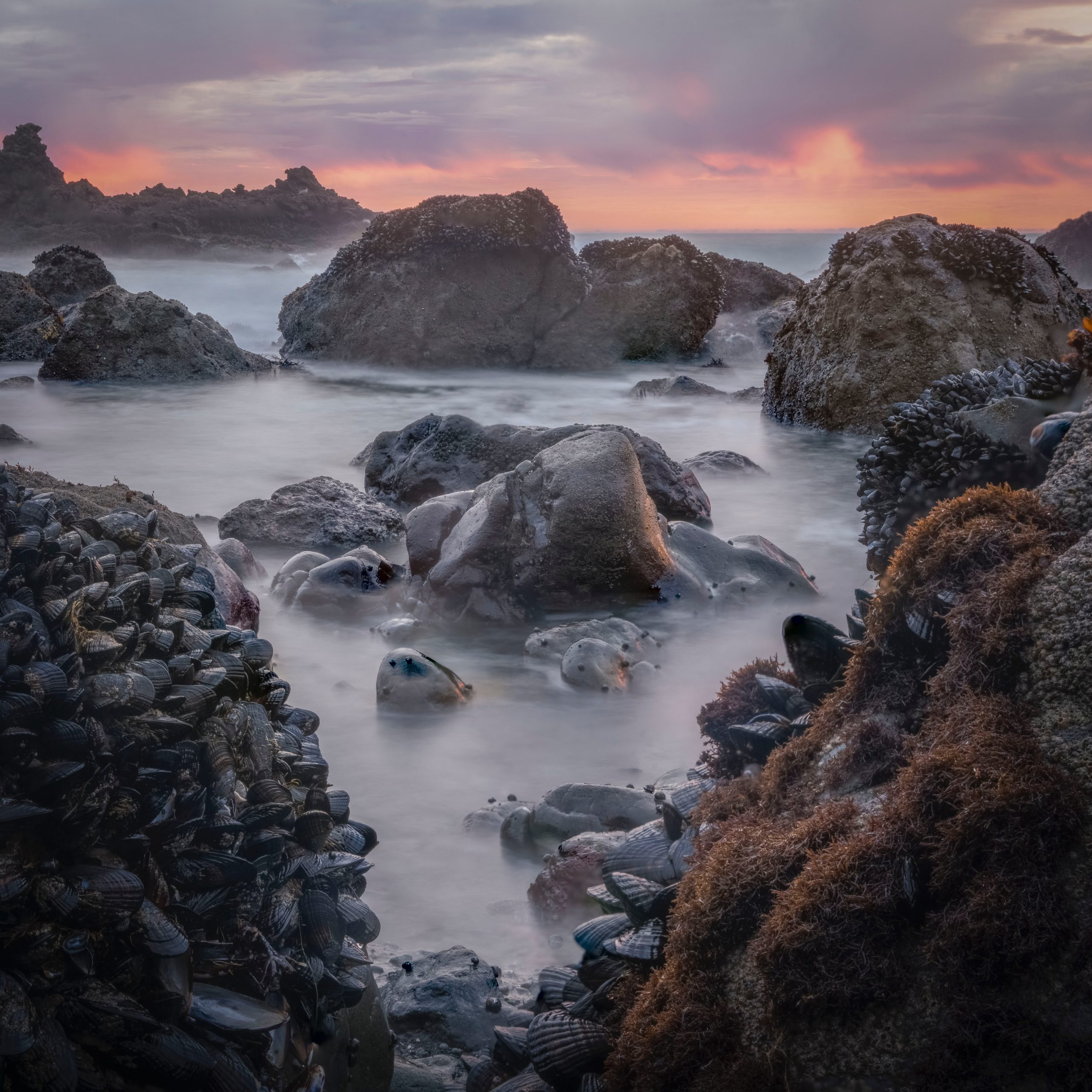 rocky shore with rocks under cloudy sky during daytime